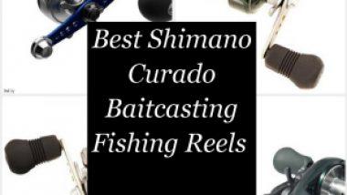 Best Shimano Curado Baitcasting Fishing Reels